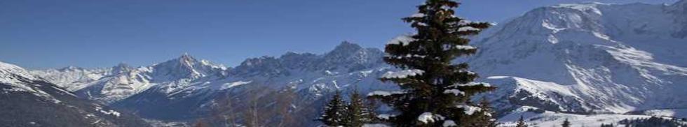 Magasins Ski Les Houches